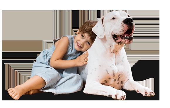 big dog with child