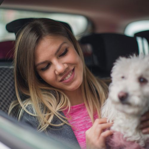 woman with dog in car